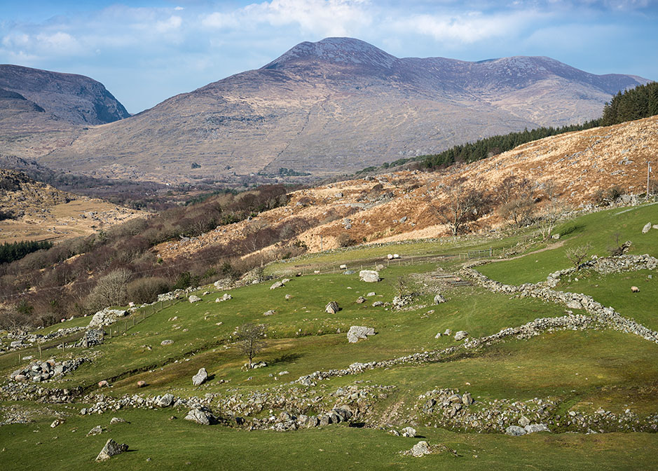 http://www.richardsprengeler.com/sheep-pastures-ring-of-kerry-3/