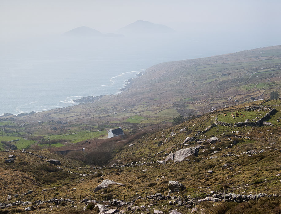http://www.richardsprengeler.com/deenish-and-scariff-islands-ring-of-kerry/