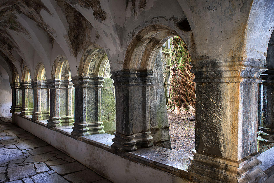 /product//cloister-muckross-friary/
