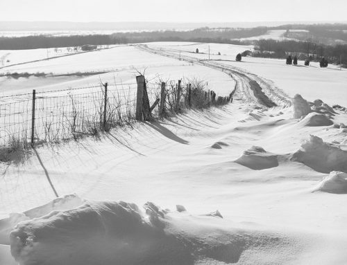 Near Prairie du Rocher, Illinois, Flood Plain of the Mississippi River, Winter, 1981