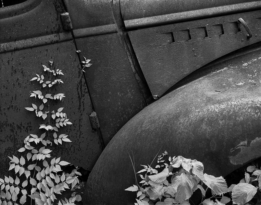 /product//old-car-leaves-4-ste-genevieve-missouri/